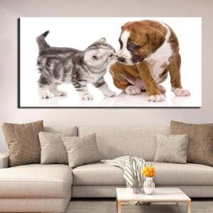 Tableau chat et chien