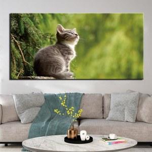 Tableau chaton dans la nature