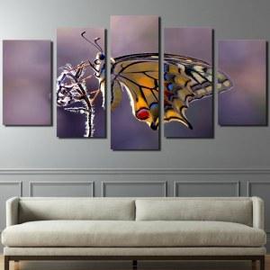 Tableau focus papillon