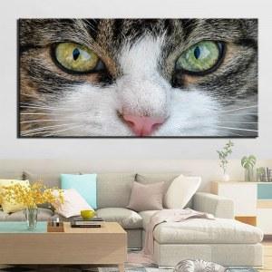 Tableau yeux de chat